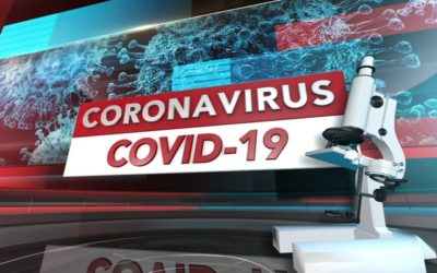 More new content on COVID-19 news platform